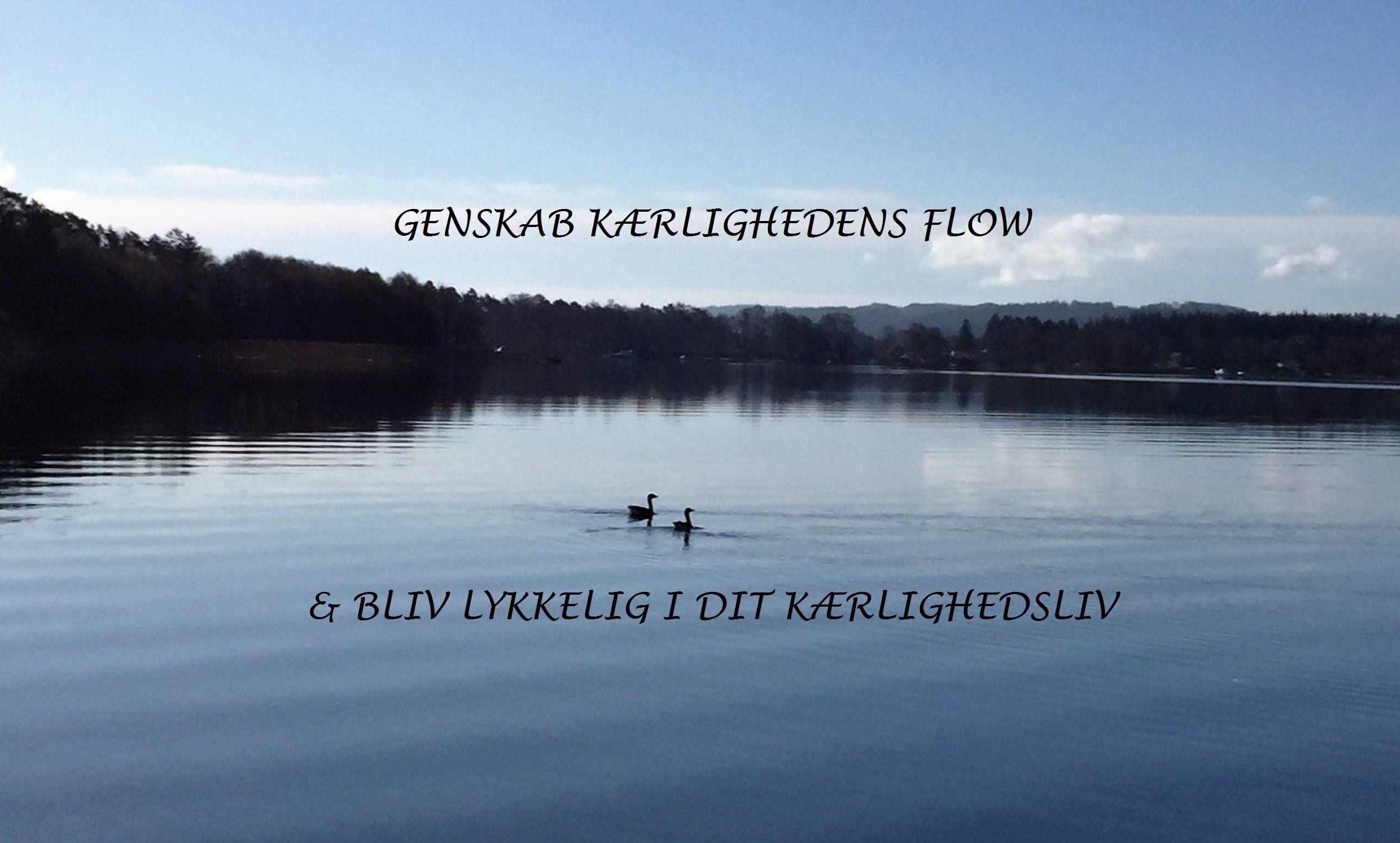GENSKAB KÆRLIGHEDENS FLOW